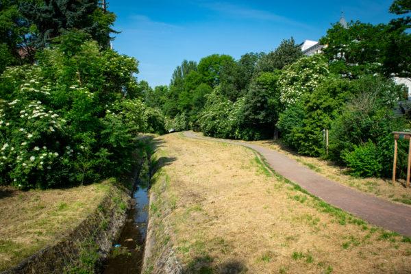 Stadtfelder Goetheanlage